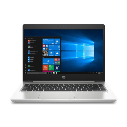 Ноутбук HP ProBook 455 G7 R7-4700U (1L3H0EA)